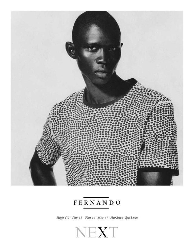 16_Fernando