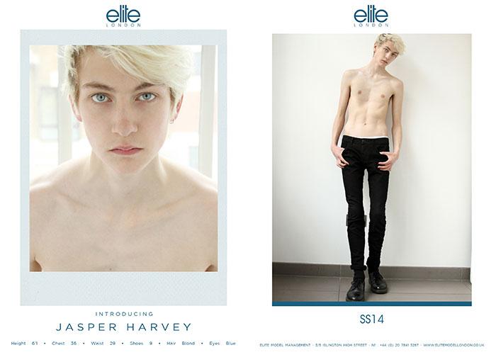 53_JASPER_HARVEY