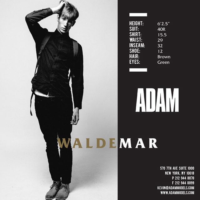 09_Waldemar_